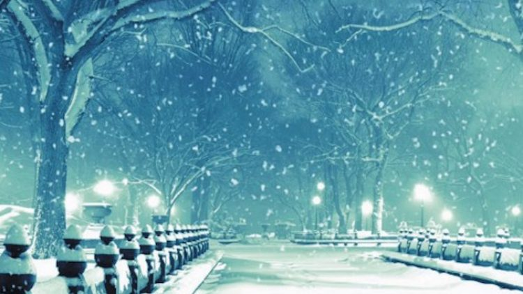 """Как прочетохте: """"Снежната кралица"""" от Майкъл Кънингам"""