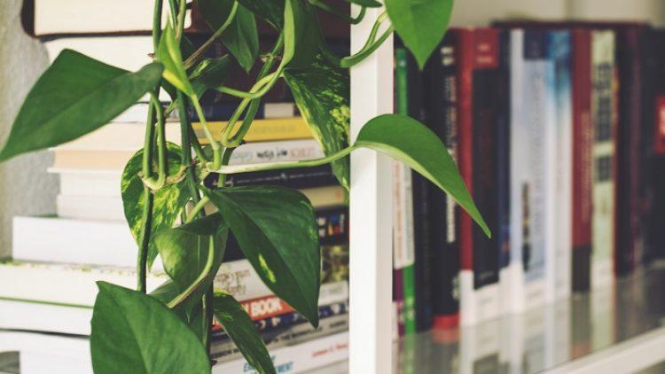 5 заглавия, с които да попълните фирмената си библиотека
